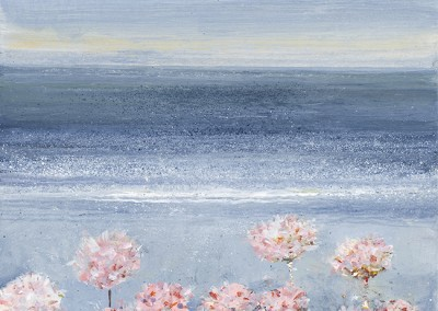 Sea Pinks / Thrift. May 2014.