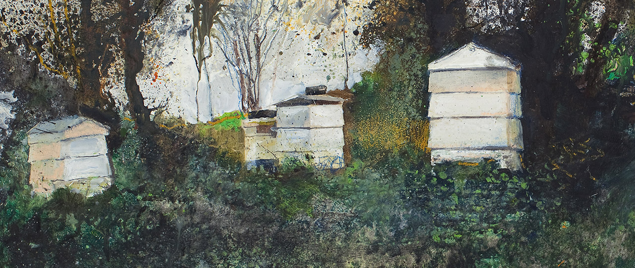 Kurt Jackson: Bees (and the Odd Wasp) in My Bonnet. 25 March – 19 August 2017.