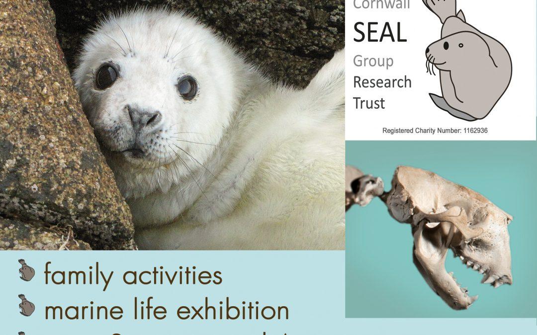 Meet Our Seals!
